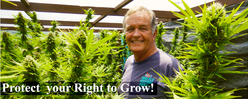 PROTECT YOUR RIGHT TO GROW!